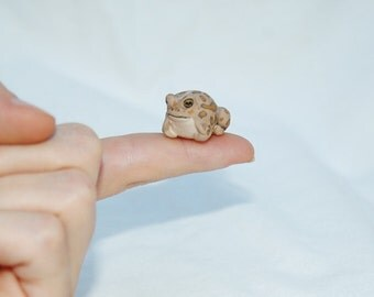 OOAK Hand Made Sculpted Tiny Miniature Critter by Amber Rose Creations. Baby Toad Frog Or custom wild animal or pet