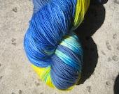 Sock Yarn - Superwash 100% Merino - Nemo's Pal Dory