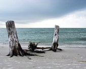 Ocean Photography Florida Stormy seascape Print Gray Blue home decor Driftwood tropical beach photos Nautical wall art 5x7, 8x10, matted
