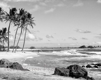 Kauai beach photography-  Palm Trees Coastal wall art Black and White Home Decor Hawaii travel photos Ocean Wall Art 8x10 matted 11x14 print