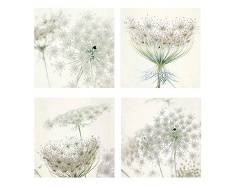 Four Queen Anne's Lace Print Set, White Floral Art Print,  Flower Photography, Cottage Chic Decor, Nursery Decor, Bedroom Decor, Summer Art