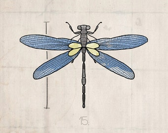 Insects Series- Dragonfly- Beautifully textured cotton canvas art print. Order as an 8x10 11x14 or 16x20 size.