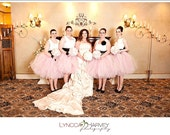Bridesmaid Dress Skirt Br...