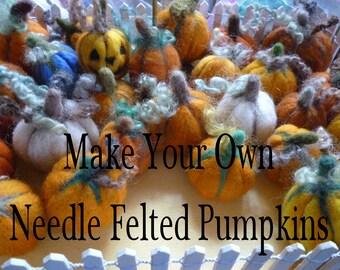 DIY Pumpkins Needle Felting Kit Fall Autumnal Gift