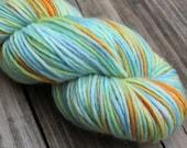 1ply Merino Wool - Beach Boy - Handpainted Wool Yarn (3.5oz)
