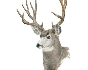 Deer Panel Fabric Etsy