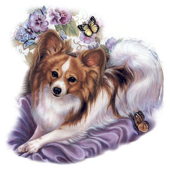 PAPILLON Brown Dog with Butterflies on ONE 18 x by ...