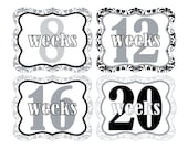 12 Weekly Pregnancy Mama-to-be Maternity Waterproof Glossy Die-cut Stickers  - Monthly stickers available - Design W010-04