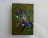 Hummingbird at Rest  Hummingbird paintings
