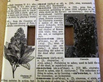 vintage dictionary CINCHONA (plant), CINERARIA (plant)  dual light switch plate