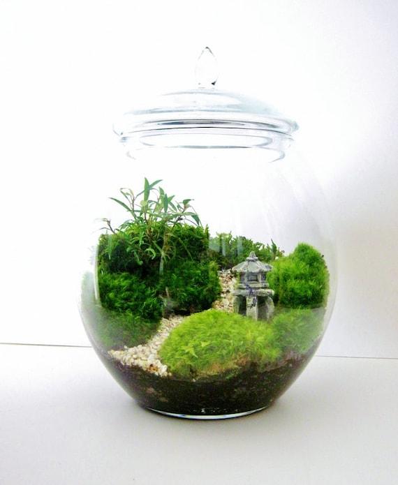 asian landscape garden terrarium with miniature path pagoda. Black Bedroom Furniture Sets. Home Design Ideas