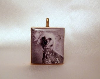 CHINESE CRESTED / Scrabble Pendant / UPCYCLED / Dog Lover Gift