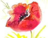 Original watercolor painting of a red poppy by Elina Lorenz. One of a kind.