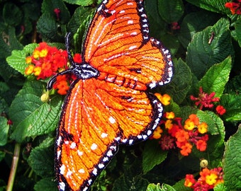 Epic  Life Sized Queen Butterfly Danaus gilippus Iron on Patch
