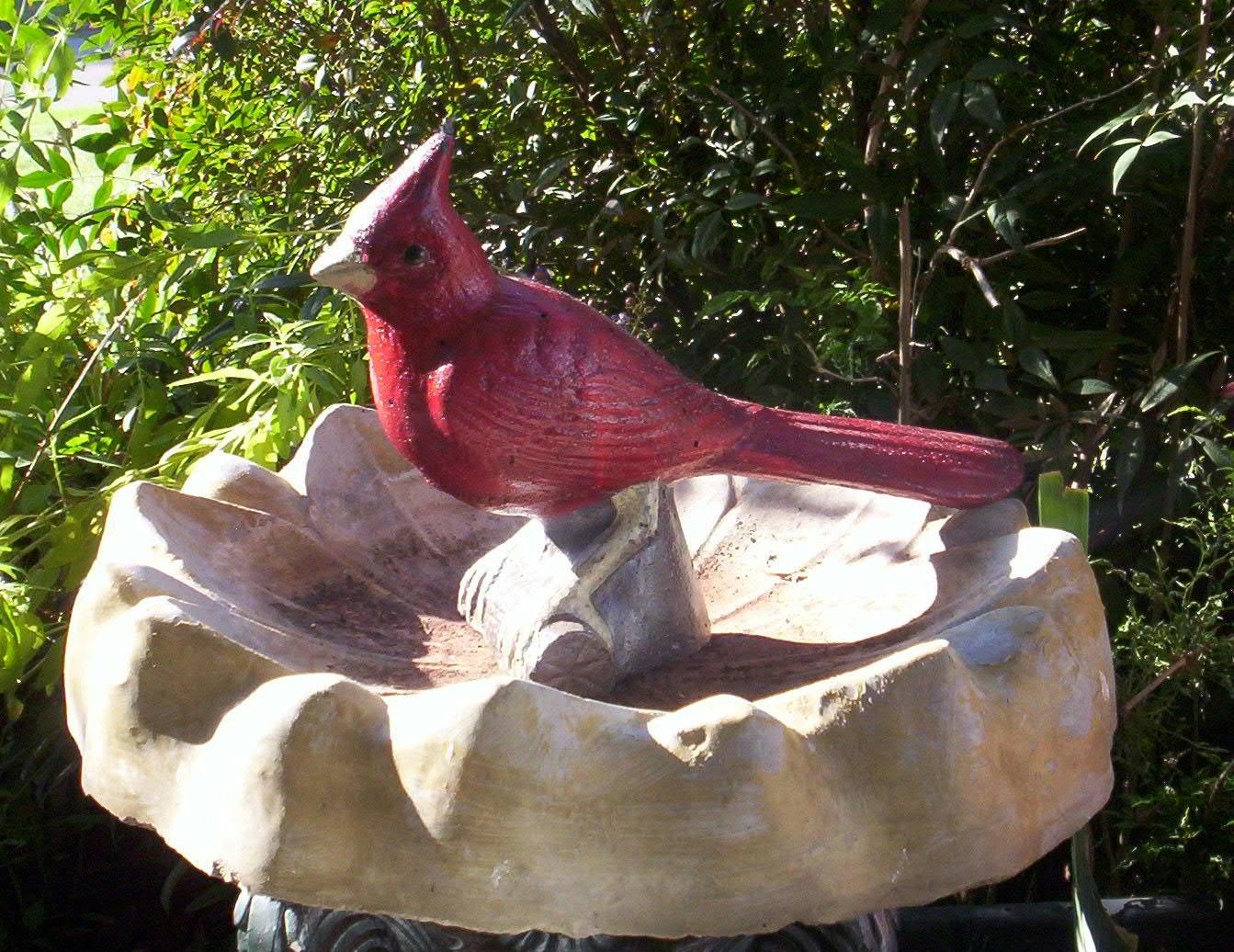 Classic Large Red Cardinal Bird Concrete Statue