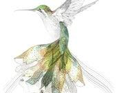 Bec's Hummingbird    A4 SIZE