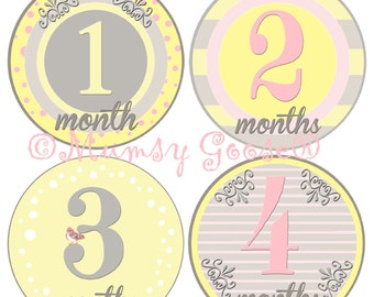 Baby Girl Monthly Age Stickers Soft Pink 12 Montlhy Baby stickers girl milestones