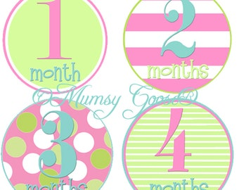Baby Girl Month Stickers First Year Sticker Set Girl Milestone 12 Montlhy Baby stickers Pink and Turquoise 1st Year Stickers Milestones
