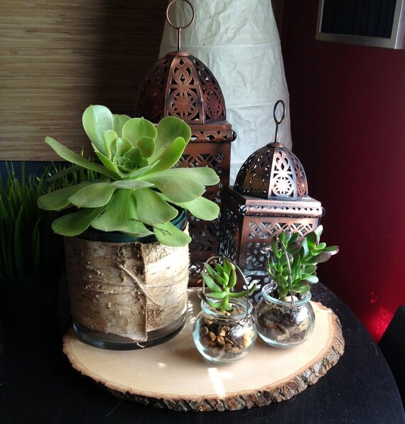 Items similar to birch bark wedding centerpiece low