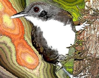 Bird Art, Sparrow Wall Decor, Digital Print, Woodland Animal Art, Orange And Green, Wildlife Art, Abstract Realism, Giclee Print, 8 x 8