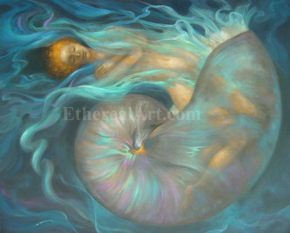 Healing Dream Art Print