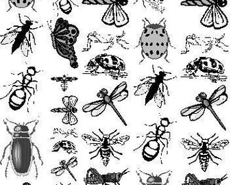Bug Theme Sepia Decals for Glass Fusing Image Transfer NEW41Bugs