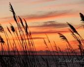 Narragansett Sunset Photo Note Card