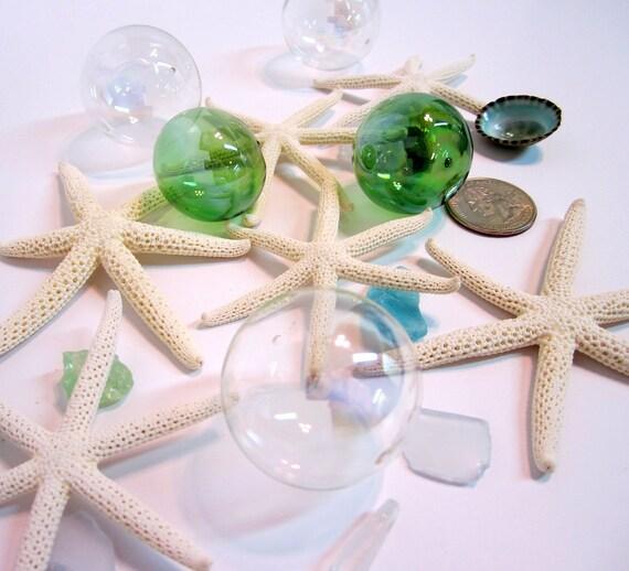 """Beach Decor Starfish - Nautical Decor RARE 6 Arm White Starfish, 2-3"""""""