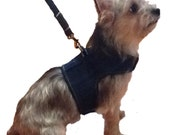 Denim Harness and Matching Lead - 4 Sizes Available