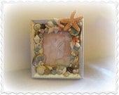Aloha Seashell frame