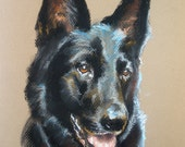 Custom Dog Portraits Pet Pastel Paintings 11x14""