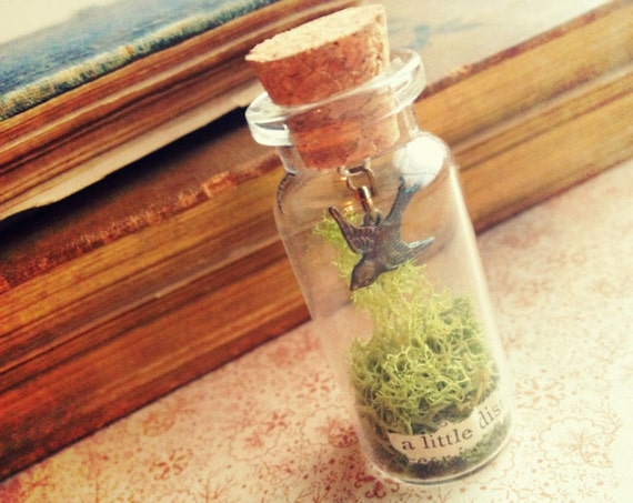 Miniature Cabinet of Curiosity Necklace - Bird and Moss - Terrarium Necklace - Whimsical Salvage Vial Jewelry