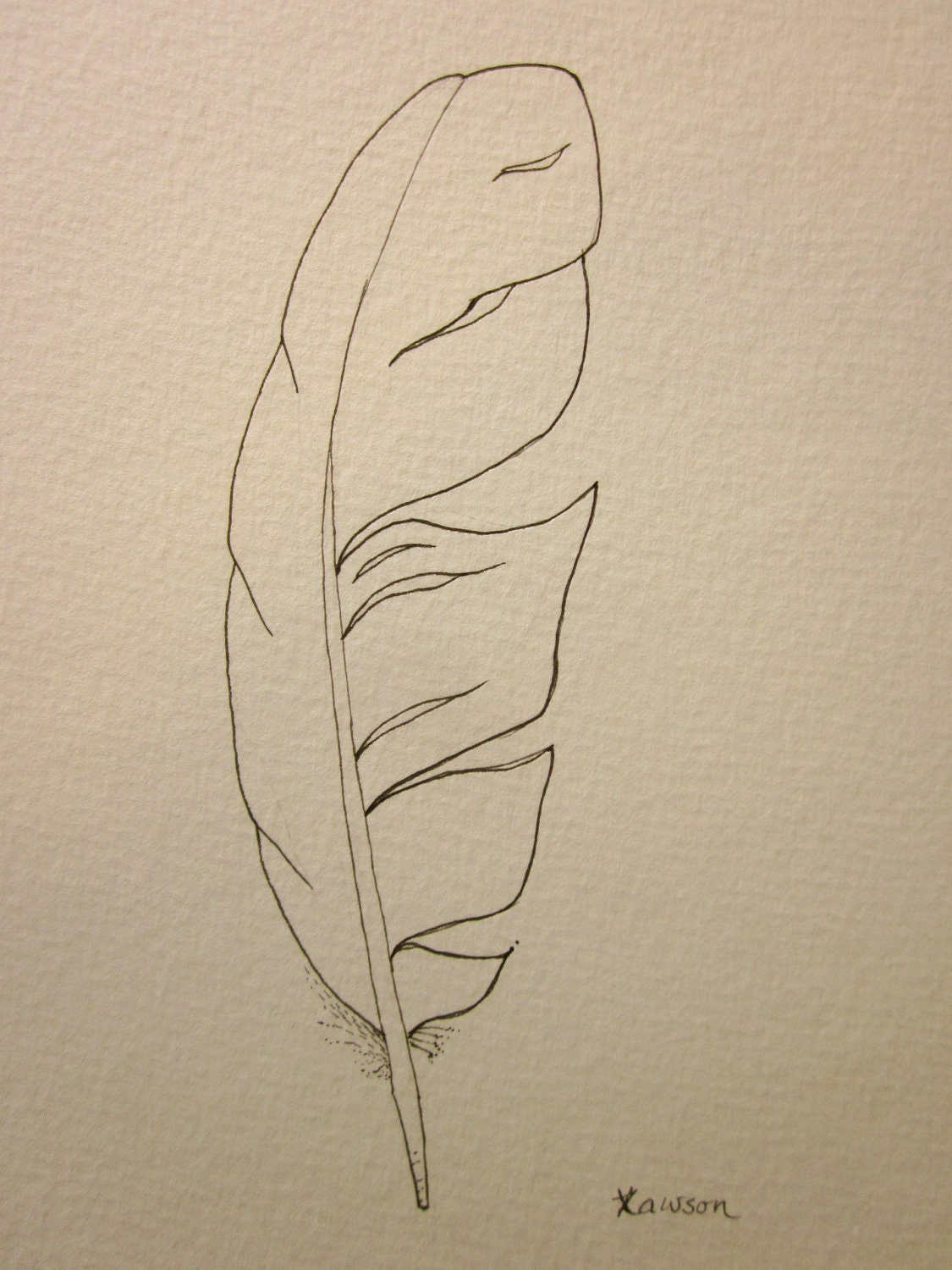 Sea bird feather original ink drawing for Ink drawings easy