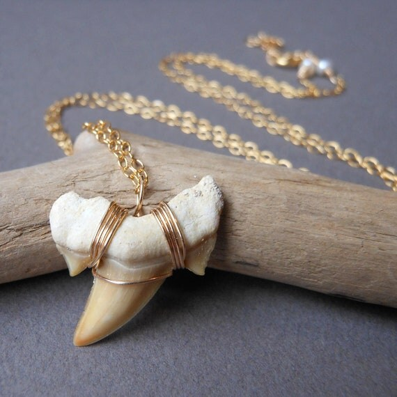 Shark tooth necklace - 14kt Gold Fill - Fossil Shark Tooth Necklace