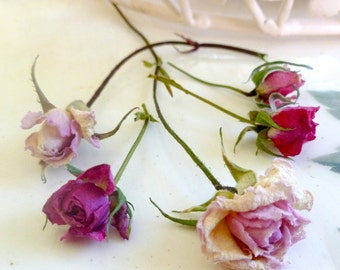 Dried Rosebuds, Pink, Red, Roses, Wedding Decorations, Craft Supplies, Dried Flower, Confetti, Table Decorations, Floral, 25 small Rosebuds