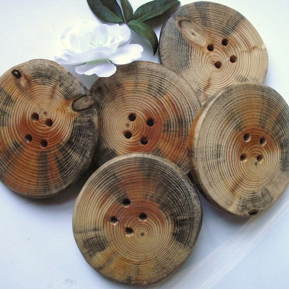 Buttons Wood - 5 Ohio Pine Wood Tree Branch Buttons - 2 3/8 x 2 1/4 inches, 4 holes, For Journals, Pillows, Purses, Knitting and Crocheting