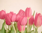 Pink Tulips - Art, nature photography, pink tulip, spring flower decor in green and pink, colorful art