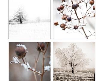 Set of 4 Winter Woodland images 5x5 fine art photos trees brown beige tan linen snow cottage decor frost snow cold blizzard sale