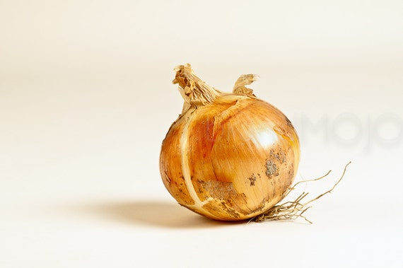 Produce onion Photograph organic sous chef staple meal cookout kitchen gold vegetable garden skin roots - You always make me cry - fine art
