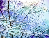 Winter Beauty, Snow Scene, 8 x 10, 11 x 14, Fine Art Multi Layered Fine Art Photo Print, Affordable Home Decor, Surreal, Purple Blue White
