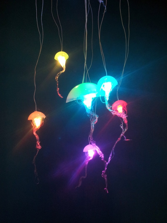 Items Similar To Jellyfish Hanging Lights With Rainbow