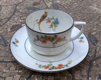Price Reduction - Antique M Z Altrohlau CMR Porcelain Cup and Saucer - Made in Czechoslovakia - Beautiful