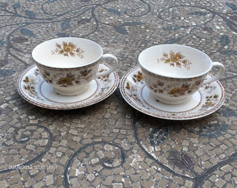 Vintage C.T.S.I. Country Garden Cups and Saucers- Lovely Fall Decor