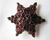 Victorian Garnet Brooch Double Star