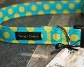 "Blue and Green Polka Dot Dog Collar Custom ""The Polka in Blue"" Custom Dog Collar"