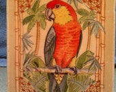 Parrot Stamp by Sugarloaf