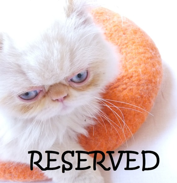 RESERVED Cat house/Cat bed/Cat cave/Cat vessel. RESERVED