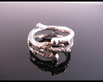 Witch Hazel Ring(Longwood Gardens)