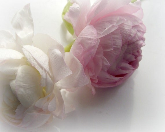 Flower Photography Soft 10x8 Print Pink Cream Spring A Subtle Beauty...