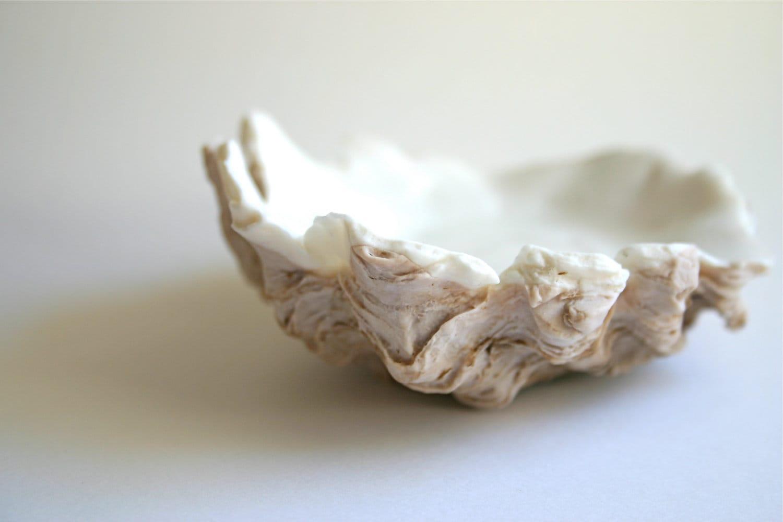 Bulk Oyster Shells Edible Oyster Shells